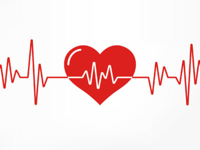 cholesterol is essential for heart health